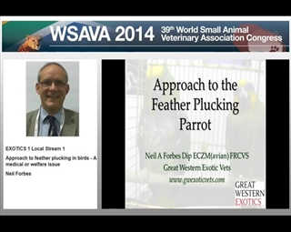 Approach to Feather Plucking in Birds - A Medical or Welfare Issue?