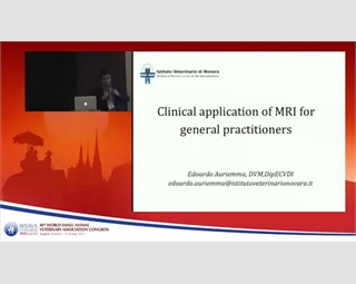 Clinical Application of MRI