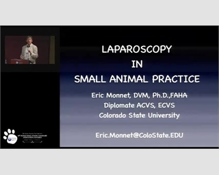 Laparoscopy in Small Animal Practice