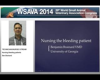 Nursing the Bleeding Patient
