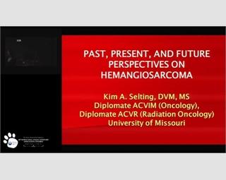 Past, Present & Future Perspectives on Hemangiosarcoma