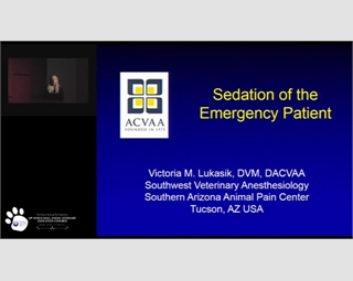 Sedation & Analgesia of Emergency Patients